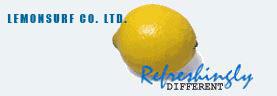 Lemonsurf, professional web design and web hosting